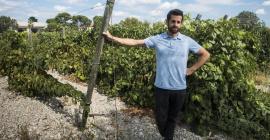 Pascal Peny, directeur du service Partenariats à Montpellier SupAgro et référent du réseau thématique #FoodTech Montpellier